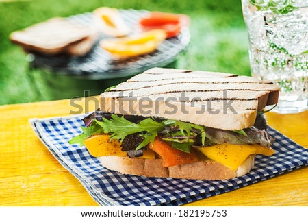 Delicious vegetarian toasted sandwich with cheese, roasted pepper and rocket on a rustic blue and white checked cloth on a summer picnic table at a BBQ - stock photo