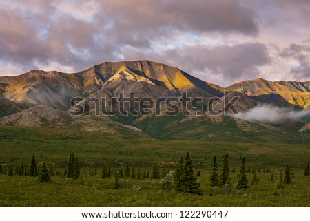 Denali Park landscapes - stock photo