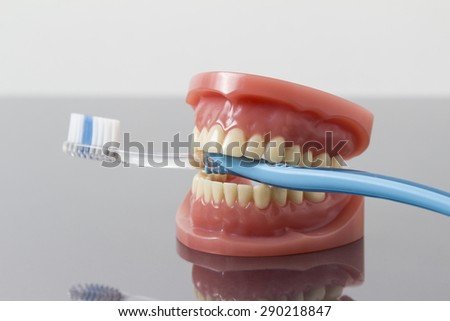 Dental hygiene and cleanliness concept with a toothbrush placed between the teeth on a set of toy plastic false teeth or dentures over a grey background with copy-space  - stock photo