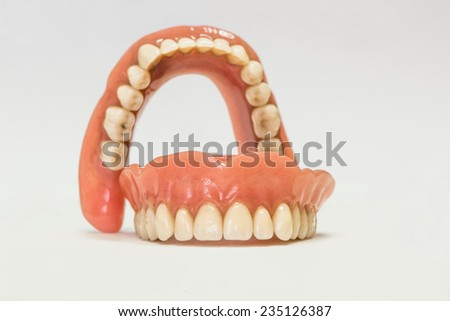 Dental phantom, dentures isolated on white background - stock photo