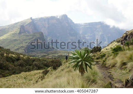 Descent to Chenek camp,in background  Shayno Shefer peak, Imet Gogo peak and Inatye peak, Simien mountains, Ethiopia , - stock photo