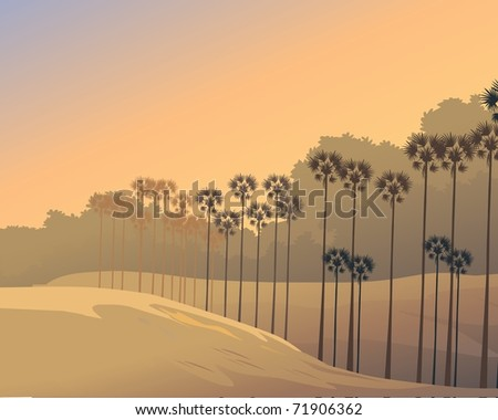 Desert at evening - stock photo
