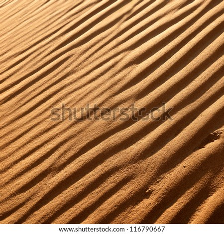 desert dunes close-up - stock photo