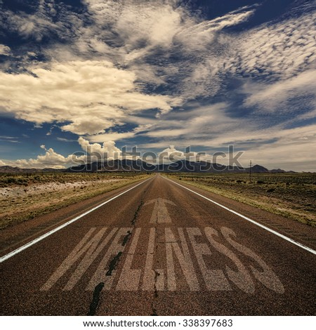 Desert highway with the word wellness and arrow - stock photo