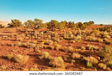 Desert landscape in Arches National Park  - stock photo