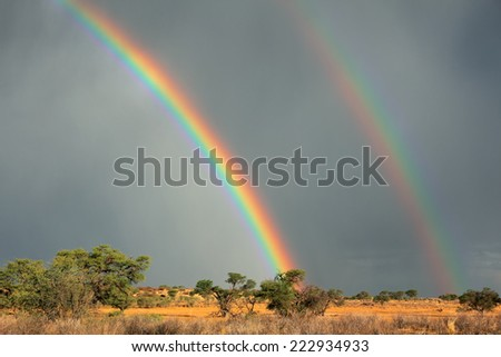 Desert landscape with a colorful rainbow in stormy sky, Kalahari, South Africa - stock photo