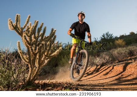 Desert Mountain Biker Next to Cactus - stock photo