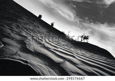 Desert of United Arab Emirates in a dramatic scene in black and white - stock photo