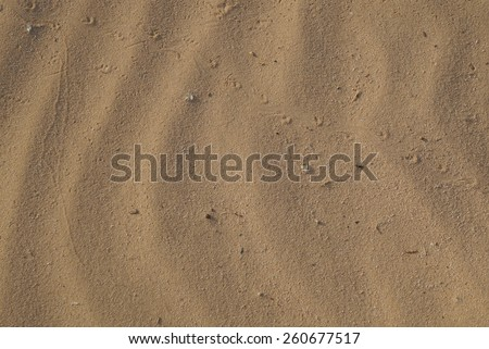 Desert sand background with animals footprints - stock photo