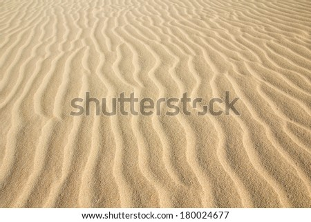 Desert sand pattern texture background from the sand in the Dunes of Corralejo in Fuerteventura, Canary Islands. - stock photo