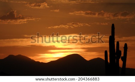 Desert sunrise with horizon silhouette and clouds - stock photo