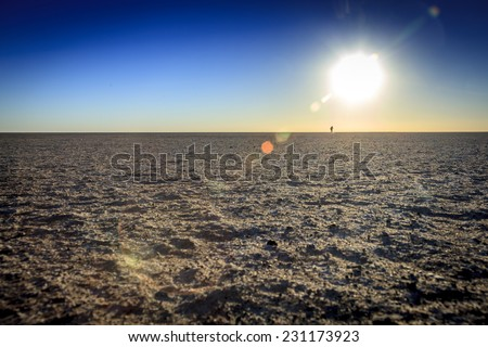 Desert Sunset - stock photo
