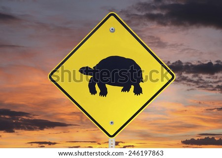 Desert Tortoise crossing caution sign with sunrise sky. - stock photo