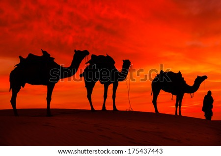 desert with camel and nomads - stock photo