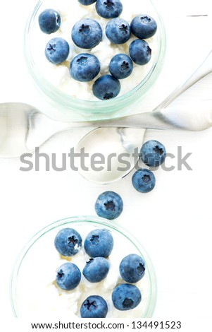 Desert with ricotta cheese and blueberry - stock photo