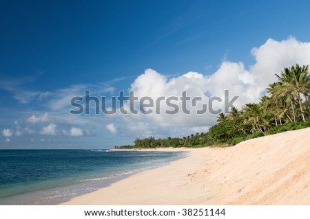 Deserted beach on the north shore of Oahu, Hawaii, with backdrop of palm trees and tropical vegetation - stock photo