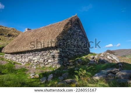 Deserted Famine Cottage - stock photo