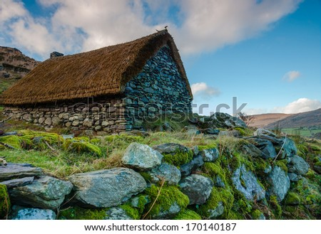 Deserted Old Famine Cottage - stock photo