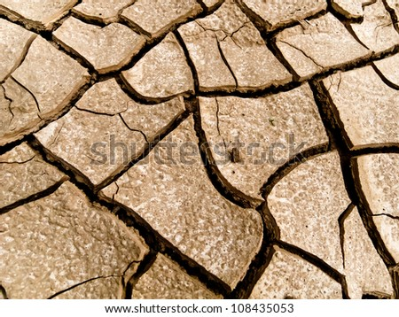 Desertification - stock photo