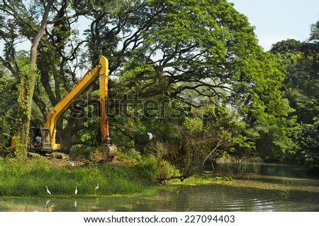 Destruction of forest, deforestation and damaging environment - stock photo