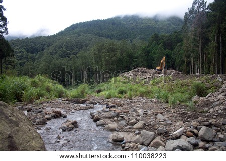 destruction of forests and environmental - stock photo