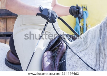detail of a girl rider on horseback and saddle on a dressage session - focus on the horsewhip - stock photo