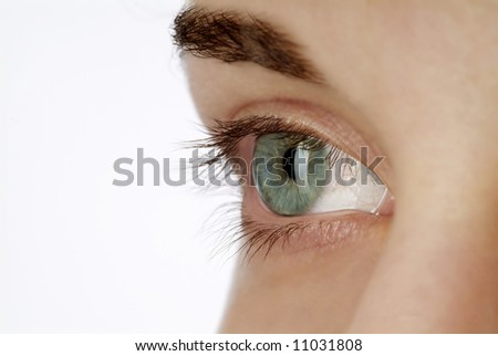detail of a green eye with brow and blond hair - stock photo