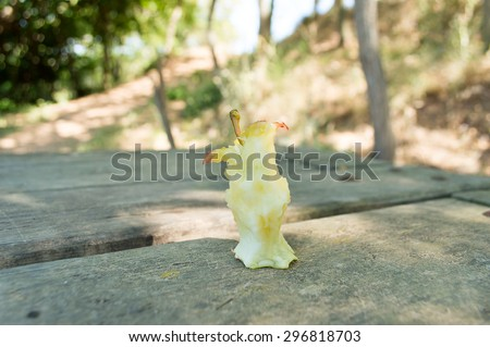 detail of bitten ended apple over the picnic table in the country - stock photo