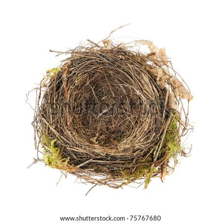 Detail of blackbird nest isolated on white - stock photo
