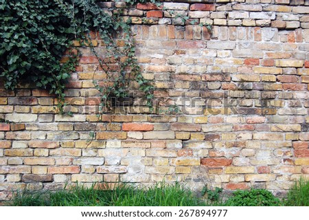 detail of brick wall - stock photo