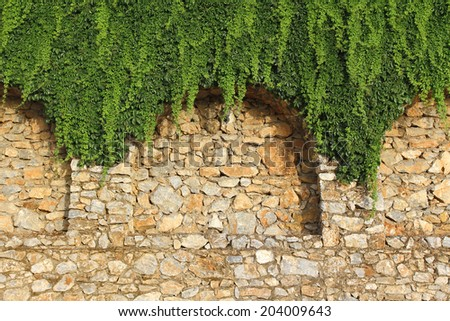 Detail of brick wall with decorative arches and growing plant  - stock photo