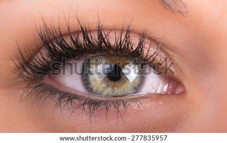 detail of eyes of the girl with long eyelashes - stock photo