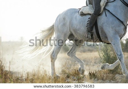 detail of running spanish horse and rider - stock photo