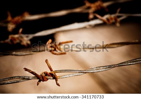 detail of rusty barbed wire, shallow depth of field - stock photo