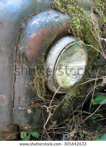 Detail of the front headlight of old car wreck in the woods - stock photo