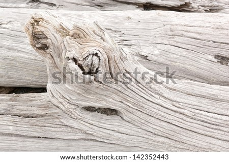 Detail of weathered driftwood found on the Chilean coast in Patagonia - stock photo