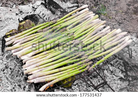 detail wild asparagus about barbecue - stock photo