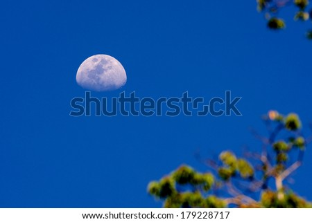 Detailed half moon against a bright blue daytime sky, - stock photo