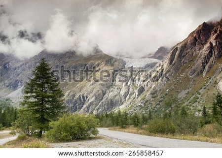 Details and rocks in a high mountain with pine trees - stock photo
