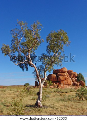 Devils Marbles with tree - stock photo