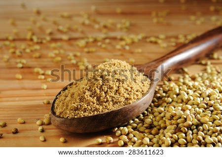 dhania powder with dhania seeds - stock photo