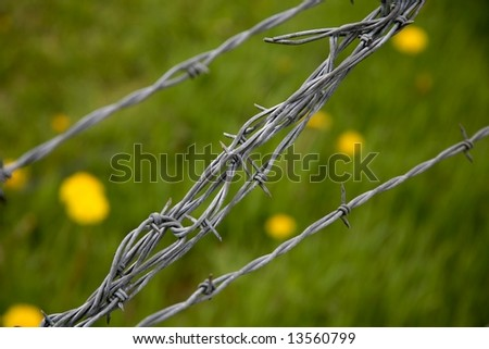 diagonal barbed wire - stock photo