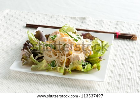 diced chicken with rice noodles in cool summer salad - stock photo