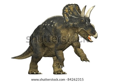 diceratops dinosaur attacking. A herbivorous dinosaur from the Maastrichtian age. Closeup head shot Isolated on white background. Clip art cutout illustration - stock photo