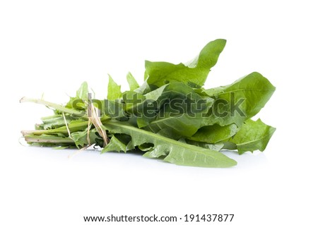Diet food. Dandelion leaves contain abundant vitamins and minerals, especially vitamins A, C and K, and are good sources of calcium, potassium, iron and manganese. Isolated on white background - stock photo