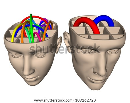 Difference between brain of woman and man - cartoon - stock photo