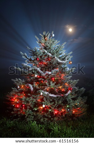 different christmas tree on snowless background, christmas tree with colored lights, - stock photo