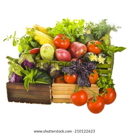 Different fresh vegetables and culinary herbs lie in colored wooden boxes  isolated on white background - stock photo