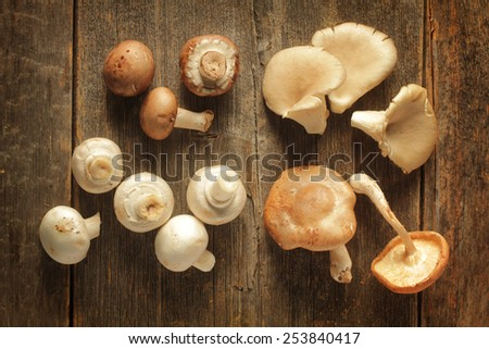 Different kind of mushrooms on a rustic background - stock photo