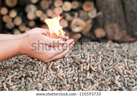 Different kind of pellets- oak, pine,sunflower- selective focus on  the heap - stock photo